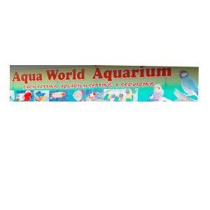 Aqua World Aquarium Kottayam Kerala India