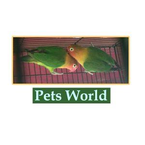 Pets World Idukki Kerala India