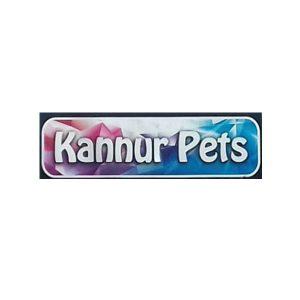Kannur Pets Kannur Kerala India