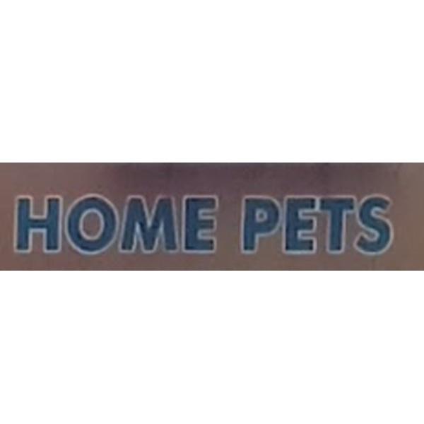 Home Pets Erode Tamil Nadu India
