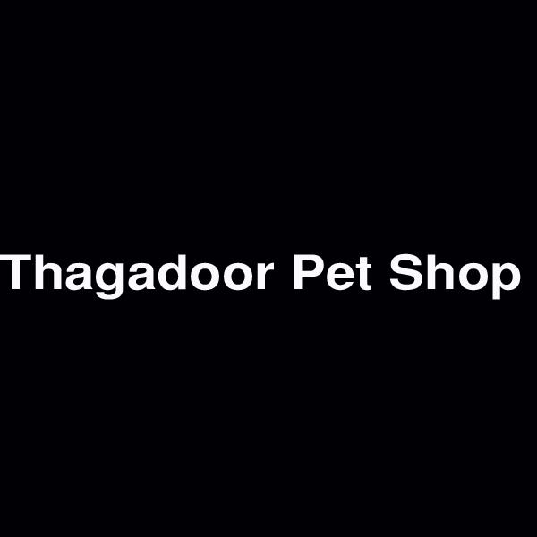 Thagadoor Pet Shop Dharmpuri Tamil Nadu India