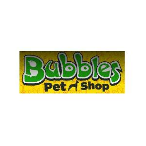 Bubbles Pet Shop Aluva Kerala India
