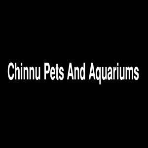 Chinnu Pets And Aquariums Bagalkot Karnataka India