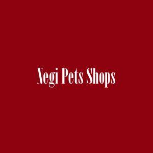 Negi Pets Shops New Delhi India