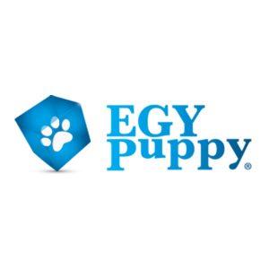 Egy Puppy Cairo Egypt